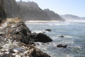 Cannon Beach shoreline